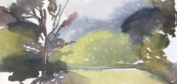 Rain Paintings